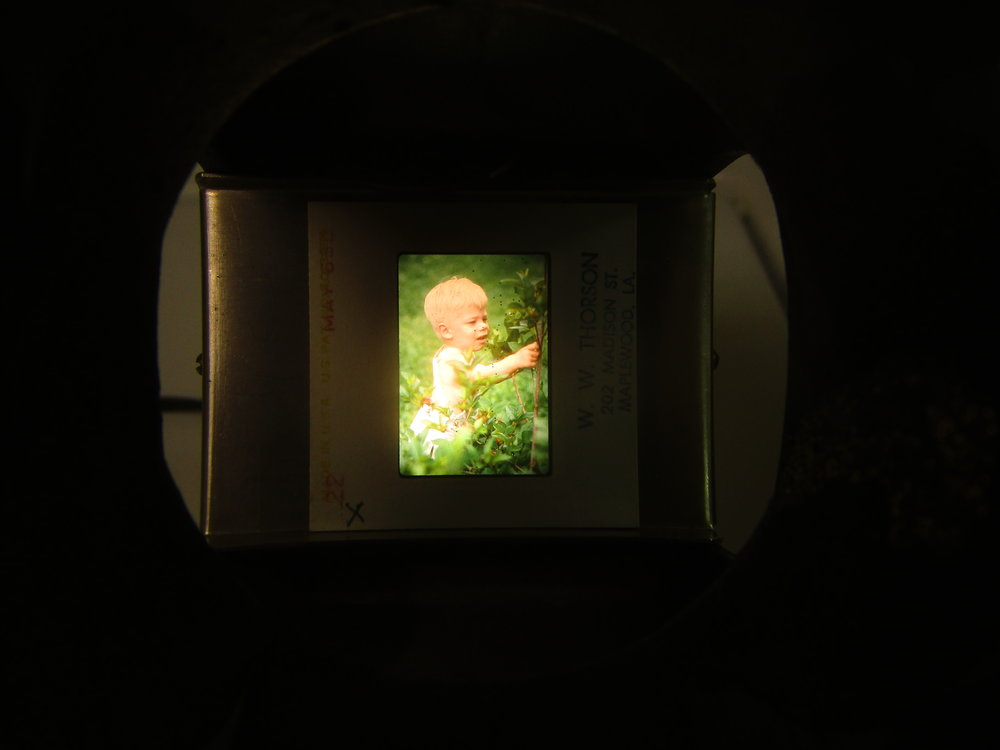 Toddler Me in Kodachrome.