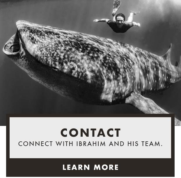 Brahmin-contact.png