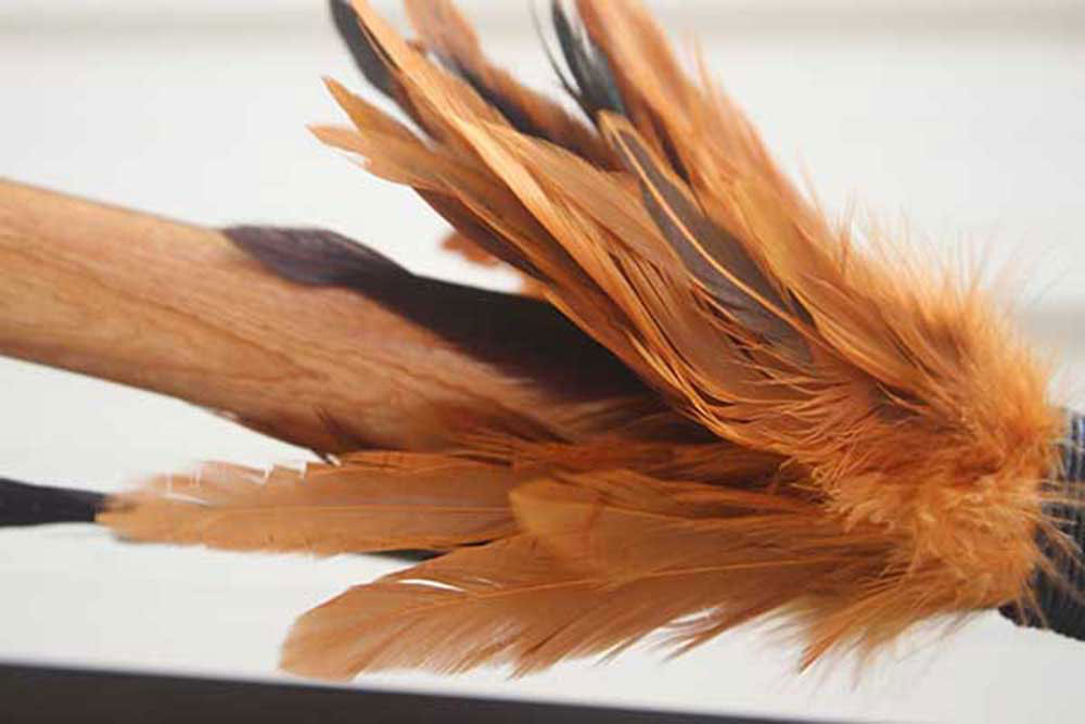 xTaiaha-feathersx.jpg