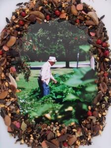 Seeds_Dad Garden