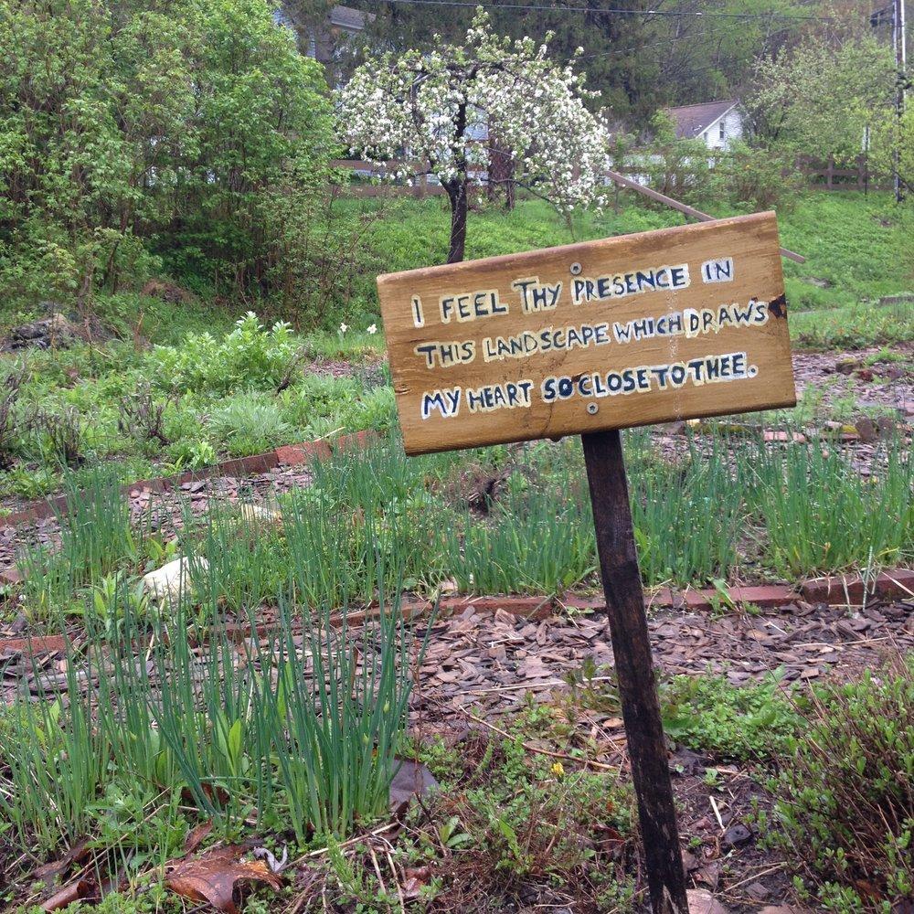 Charming Sanctuary Garden