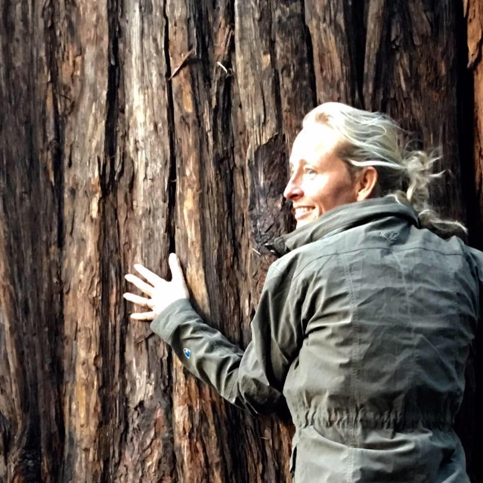 clare-dubois-treesisters