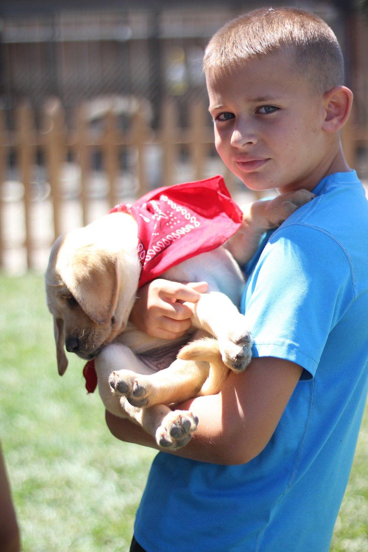 Puppy Koda and Jace