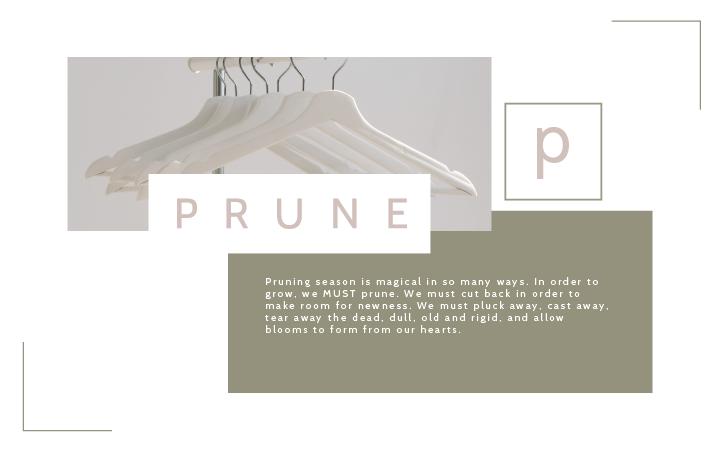 Prune-banner-01.png