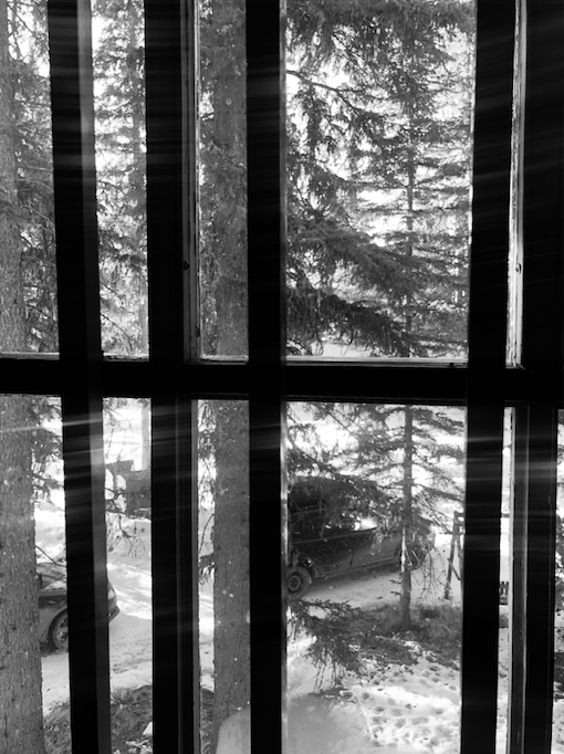 In Jail. Photography of bars on window