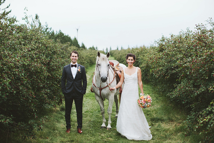 bride and groom with horse, white horse, hugo boss suit, rustic wedding, saskatoon farm wedding, david guenther, calgary wedding