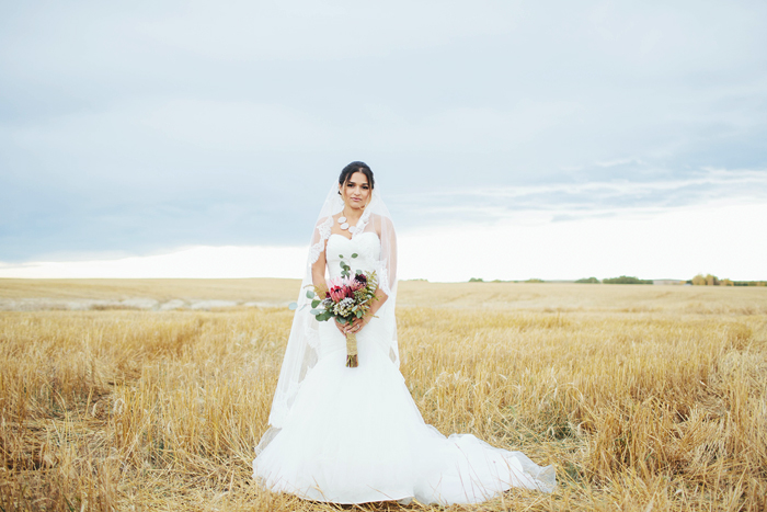 calgary wedding photographer, calgary wedding, lethbridge wedding photographer, david guenther