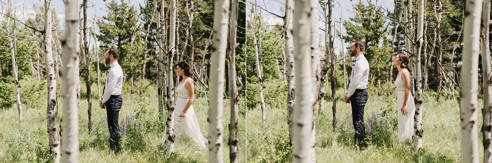 Flower Farm Crowsnest Pass Wedding -100.JPG