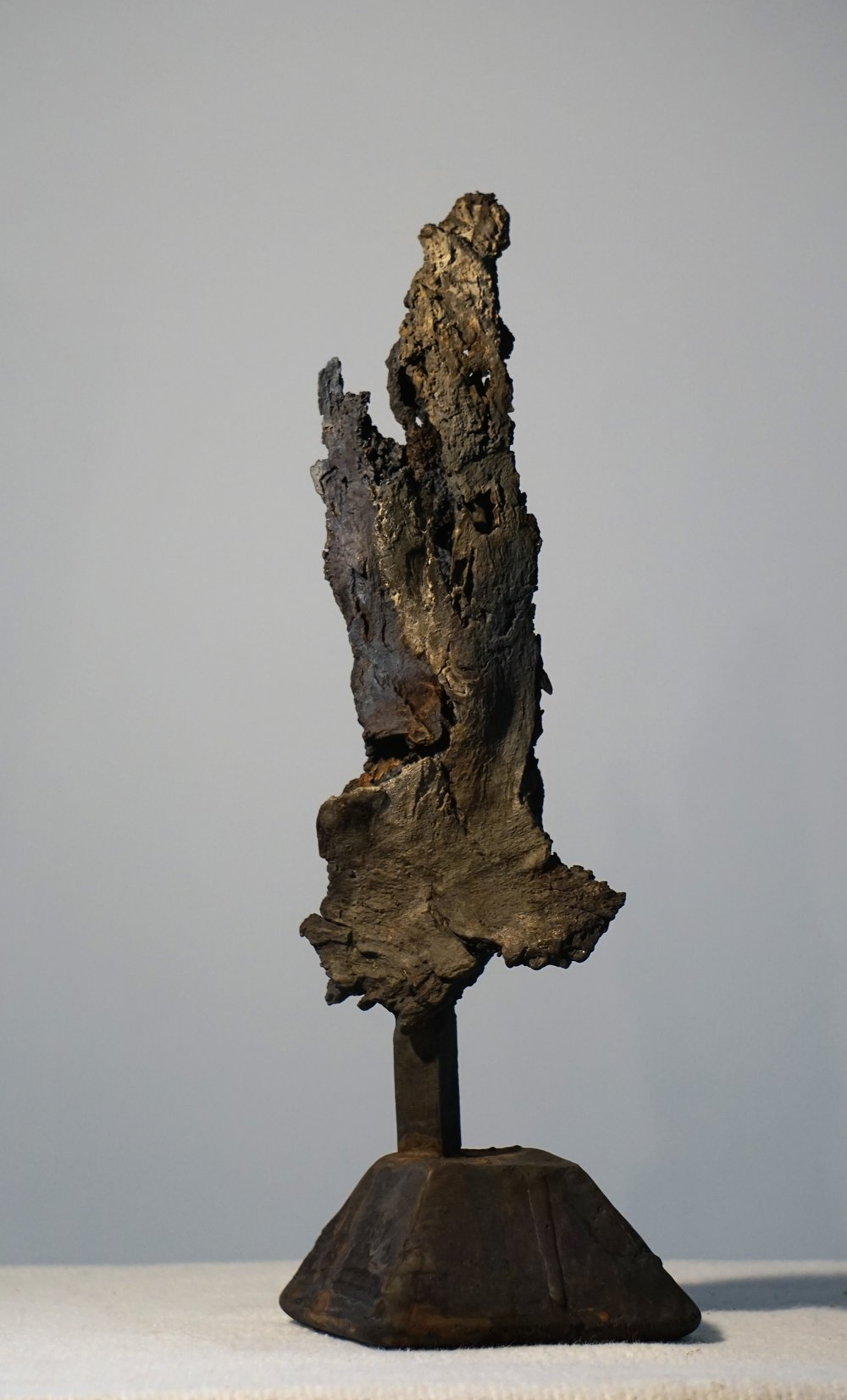 Sculpture/Bark Series