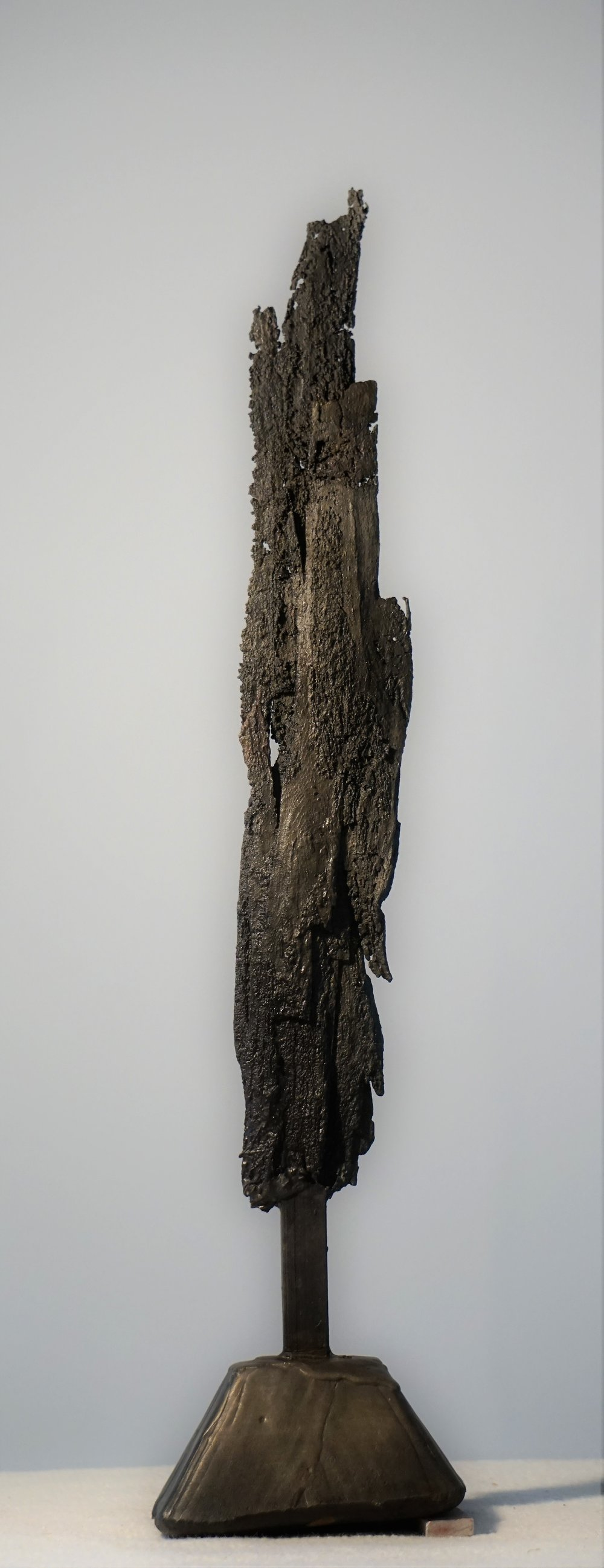Bark #9