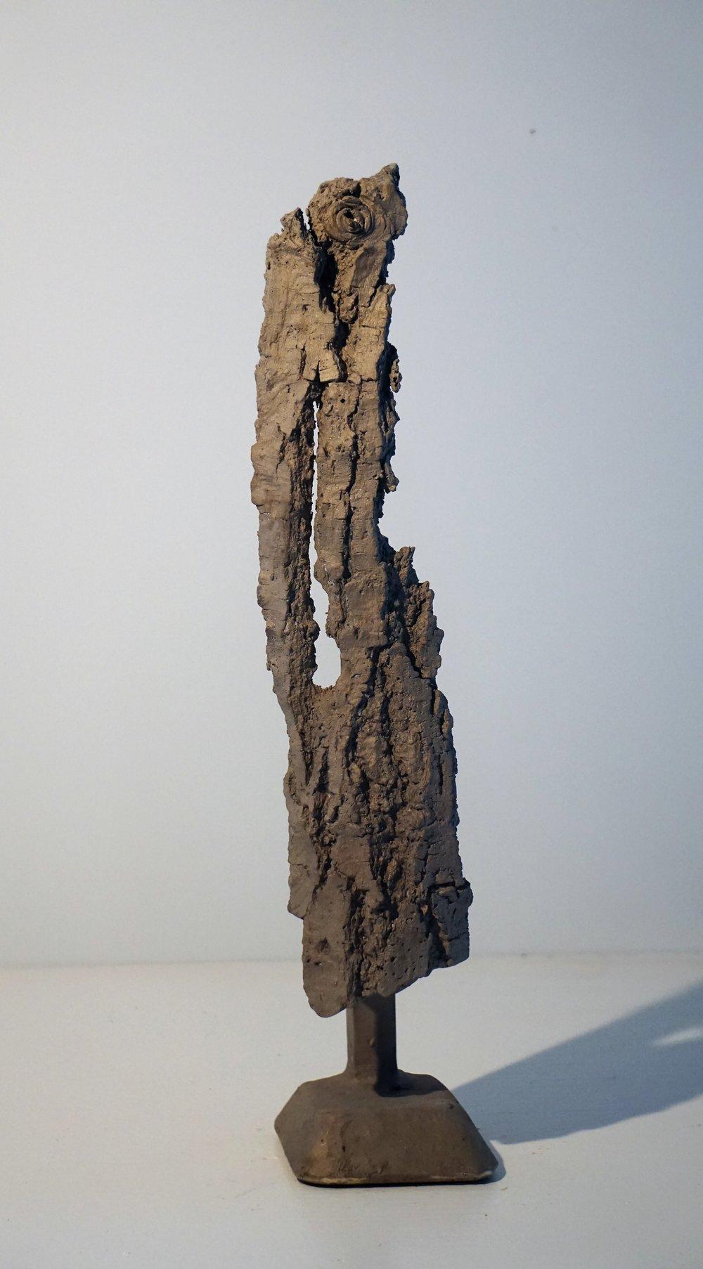 Bark #17