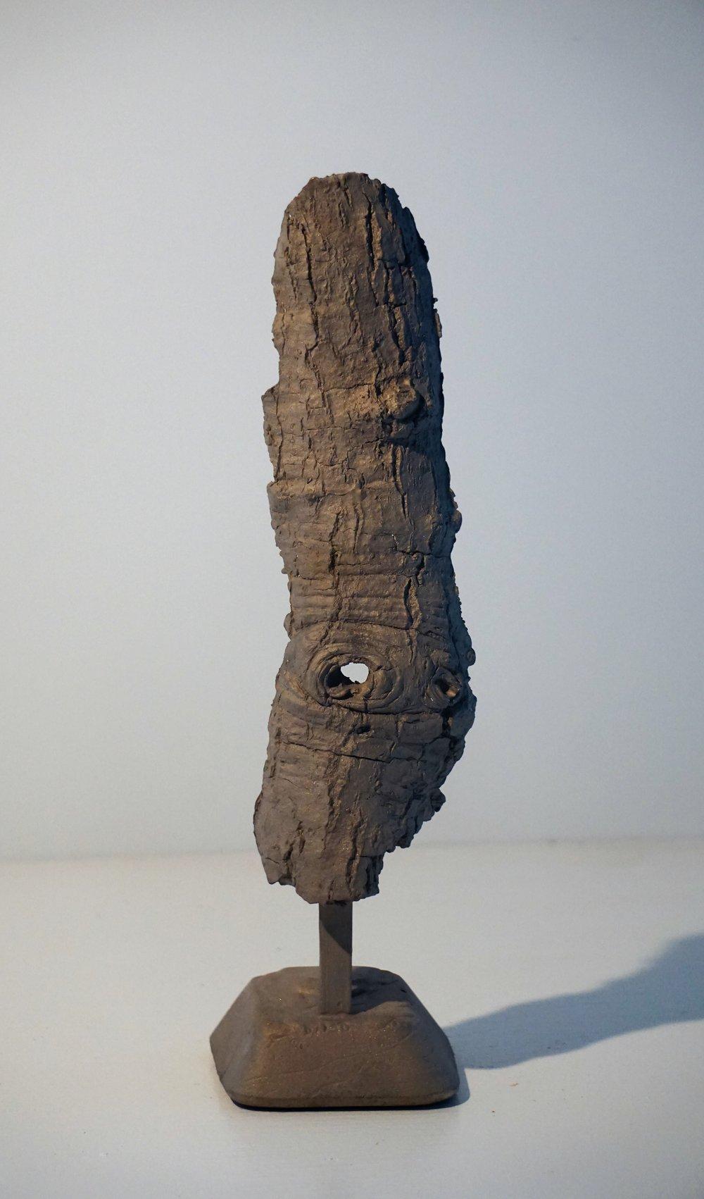 Bark #15