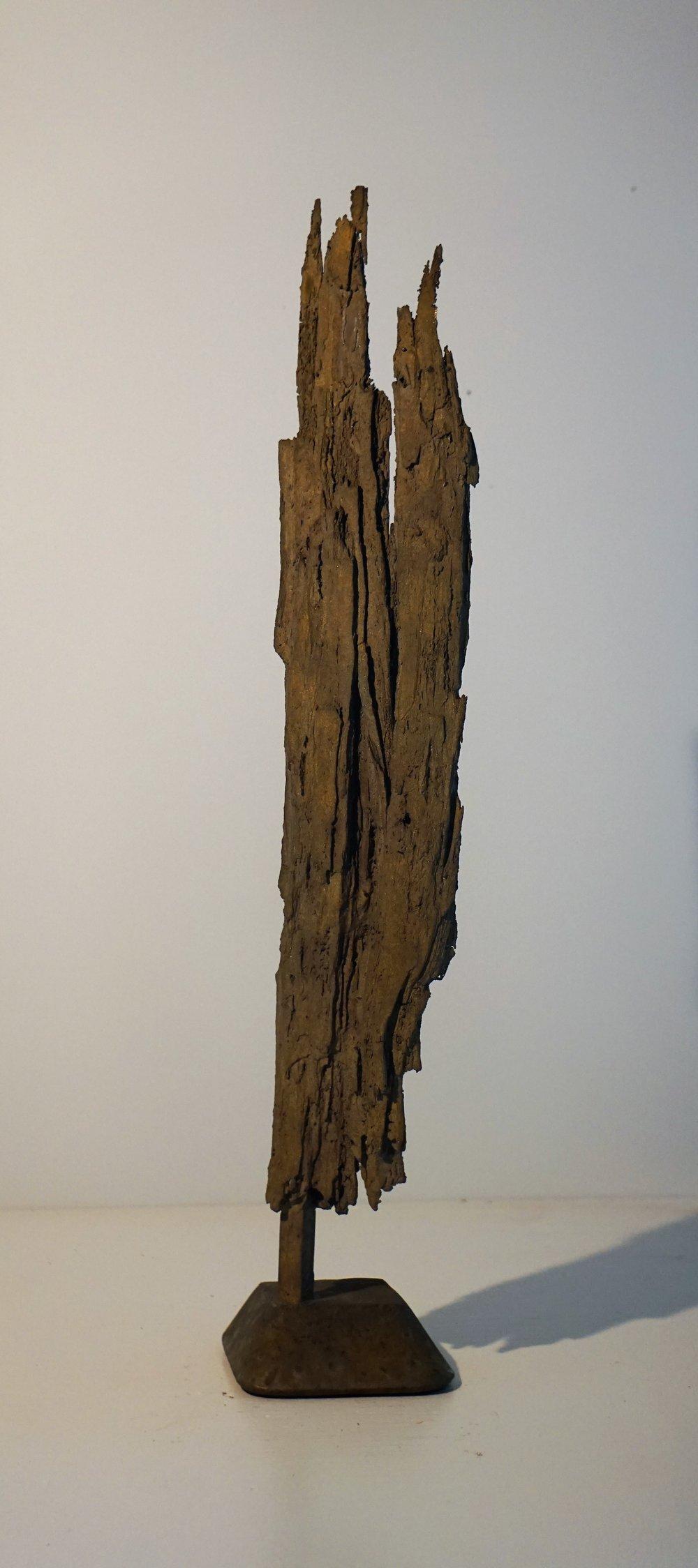 Bark #12