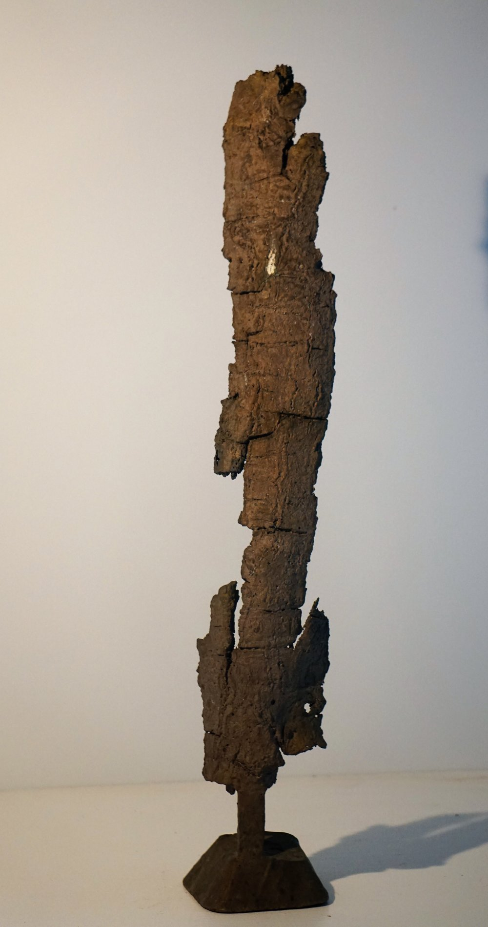 Bark #13