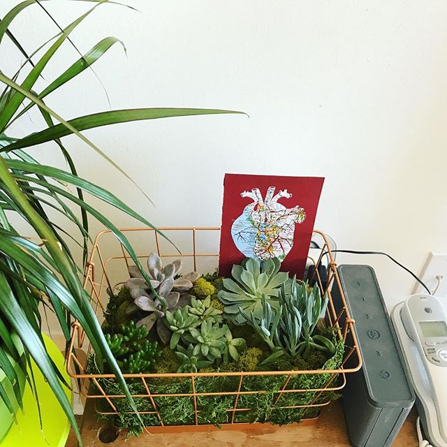 Waiting for clients at the studio today! #sixandtenstudio #studiolife #vignette #succulents #corazon