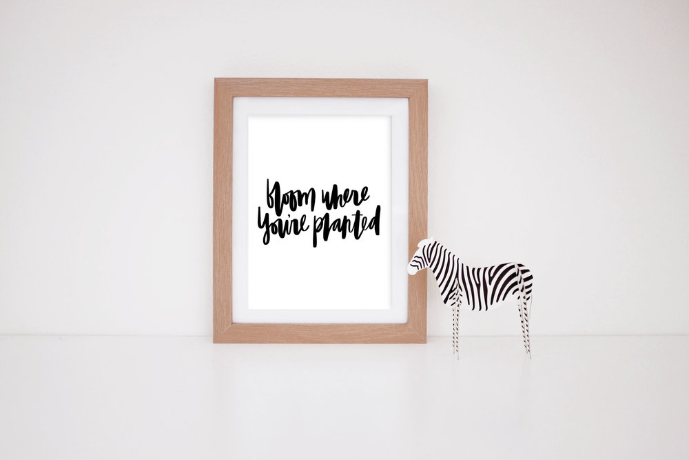 MaryRizzaCruzCreative_ArtInFrame_Zebra_Nursery_Procreate_BloomWhereYourePlanted-Blk_2016.jpg