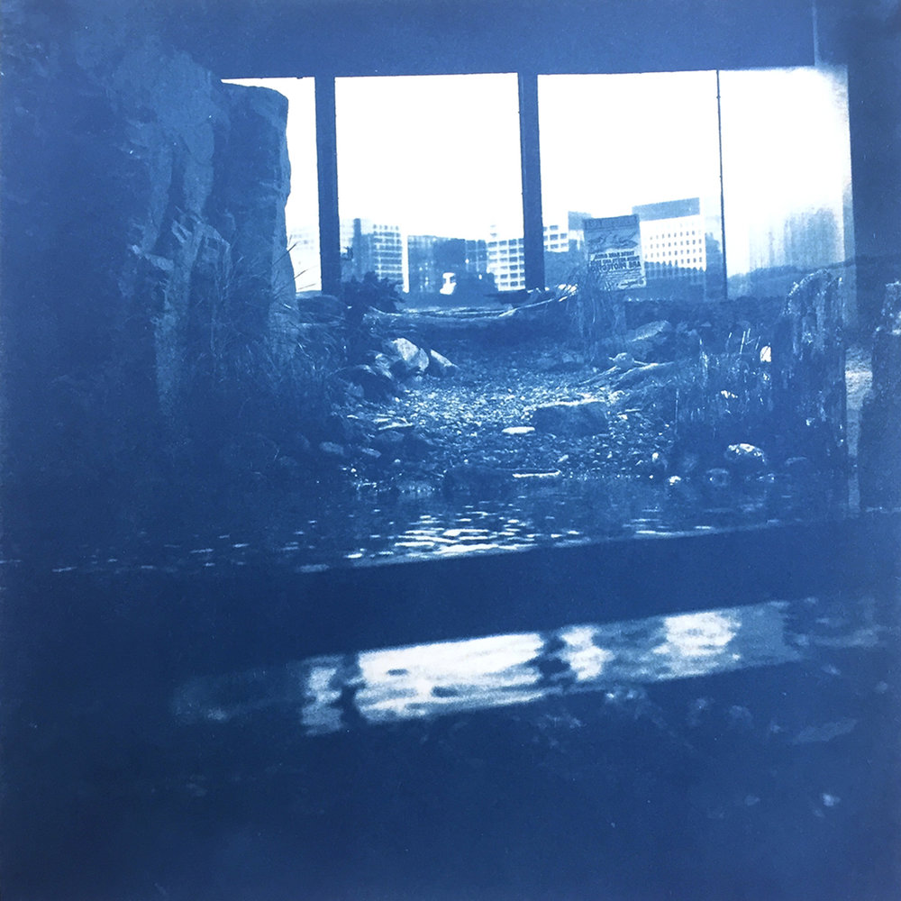 (IV) | Cyanotype on Rice Paper | 8in x 8in | 2018