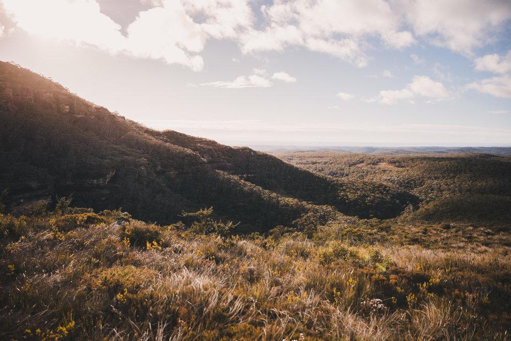 Mt Hay