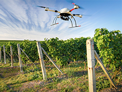 agriculture-UAV.jpg