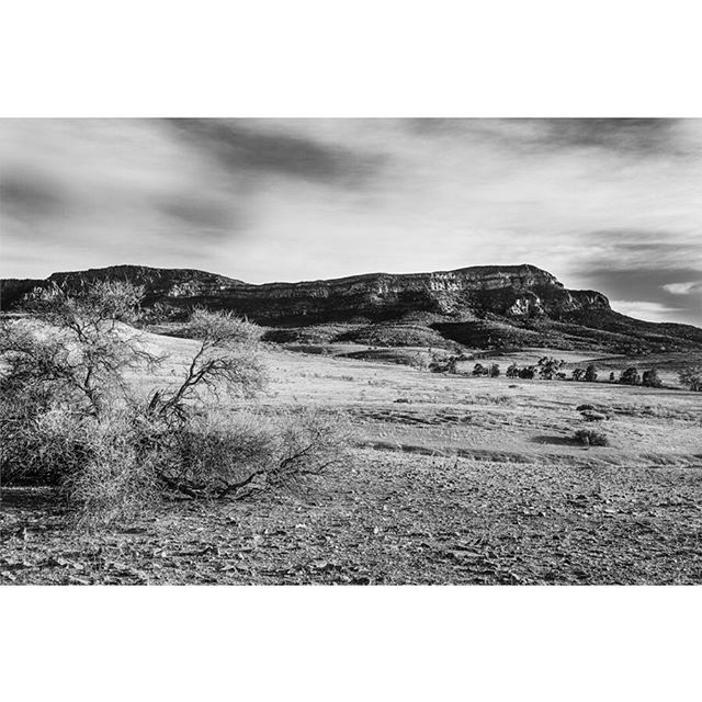 Wilpena Pound, Australia. Flinders Ranges, South Australia. • • • • • #landscape_lovers #southaustralia #landscapephotography #somewheremagazine #landscape_captures #ifyouleave #oftheafternoon #subjectivelyobjective #EarthVisuals #beautifulplaces #rentalmag #paperjournalmag #noicemag #archivecollectivemag #onbooooooom #verybusymag #phornography #broadmag #lekkerzine #landscapelovers #thisveryinstant #fineartphotography #fdicct #fineart #insidesouthaustralia #wilpenapound #seesouthaustralia