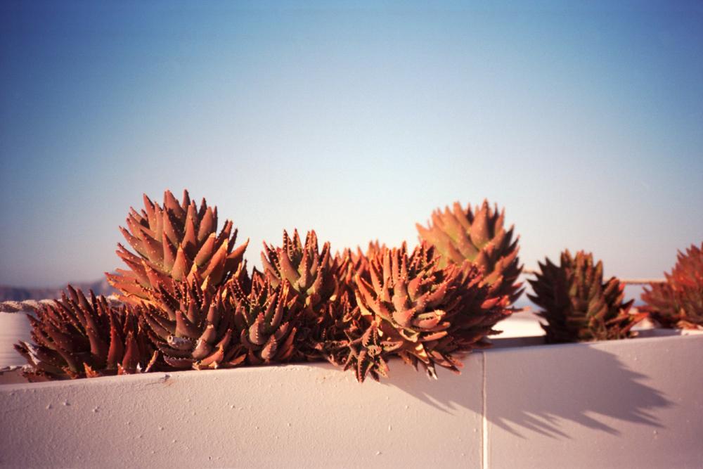 Santorini-009.jpg