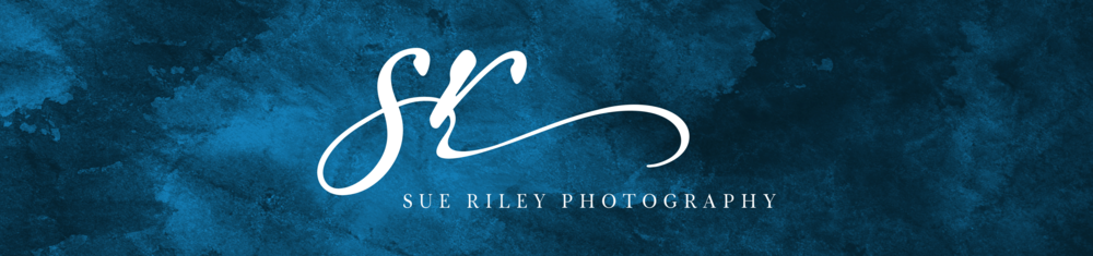 Sue Riley Photography - Logo - by Tarragon Studios