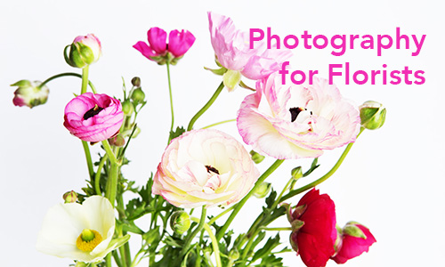 photography for florists