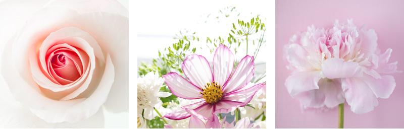 flowery intagram hashtags