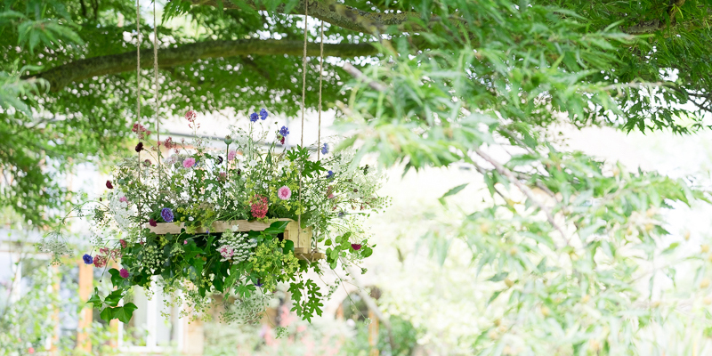 My British Flowers Book highlights — Emma Davies Photography