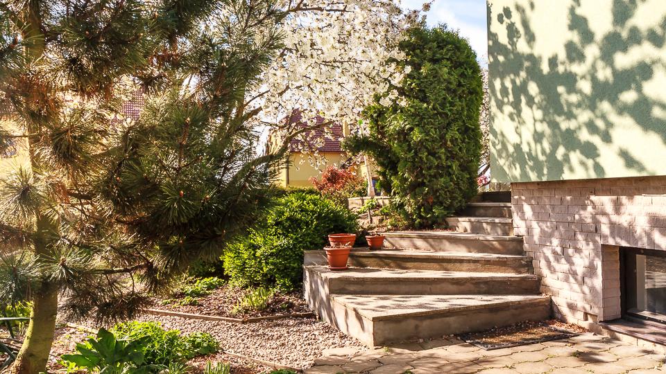 NestLingue garden / Zahrada školky