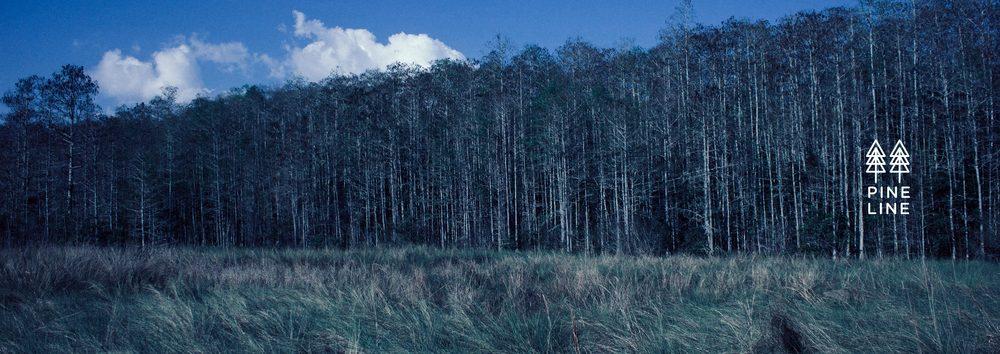 Pine-Line-concept-3.jpg