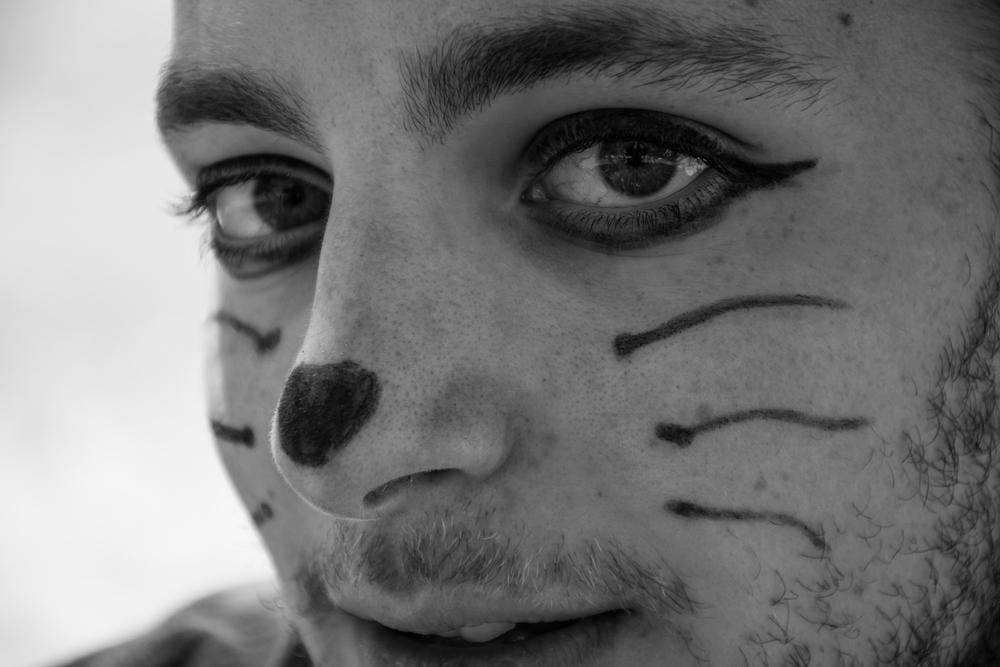 Cats - 37.jpg