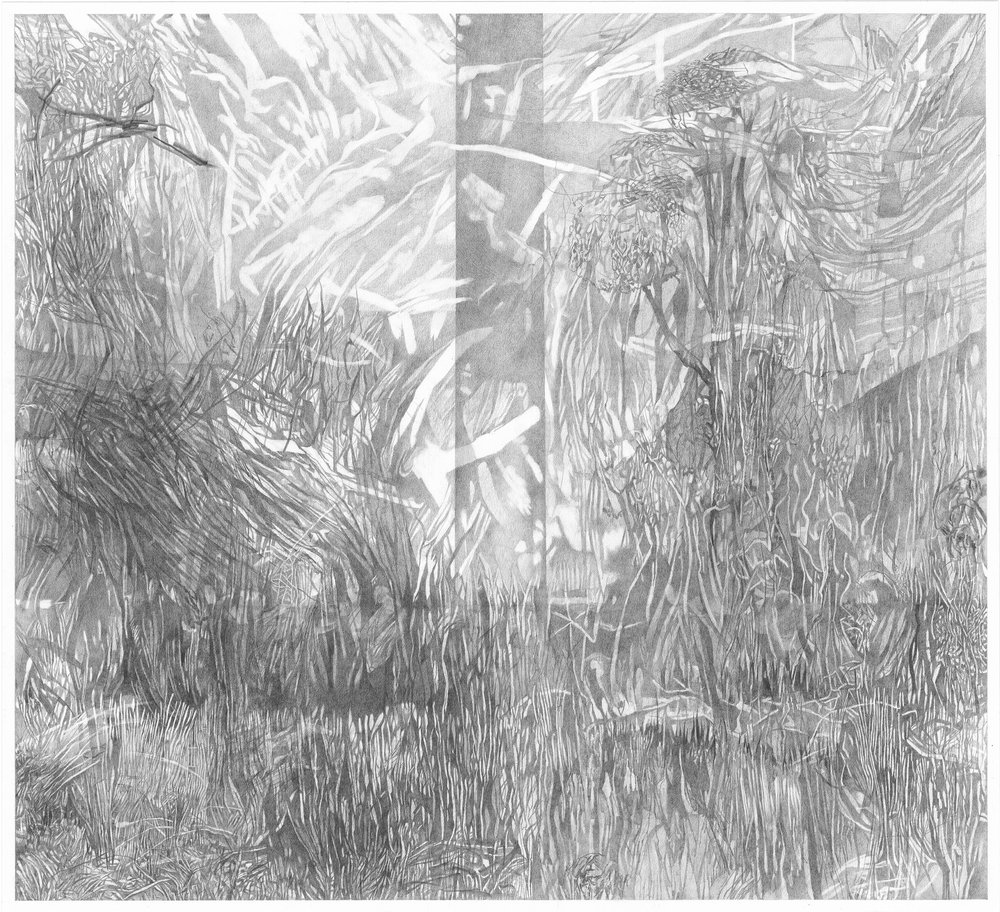 The Big Field in View of The Cig , 2017. Pencil on card. 40.7 x 45 cm.