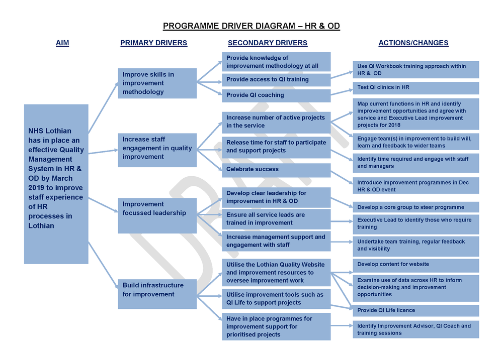 DRIVER DIAGRAM FOR THE OVERALL hr & od PROGRAMME