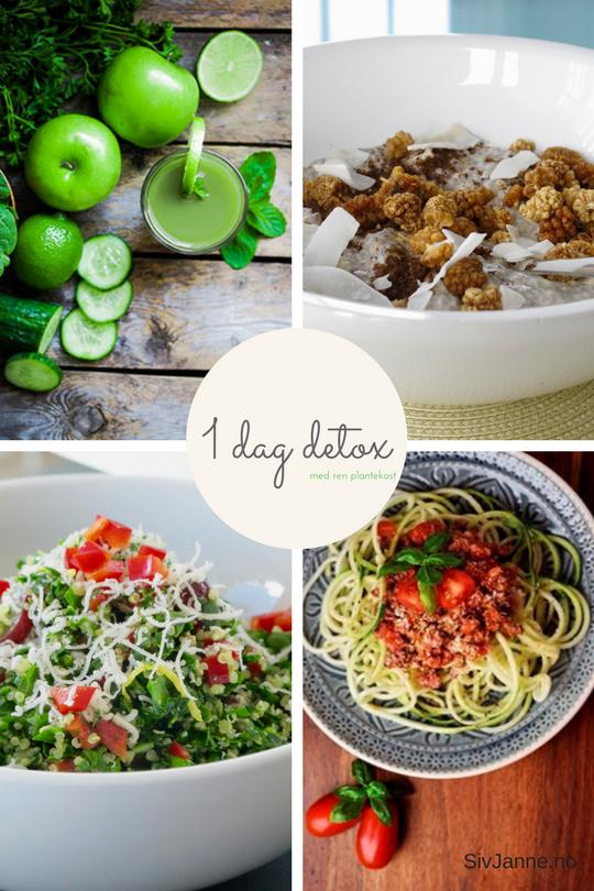 Meld deg på nyhetsbrev og få gratis oppskriftsbok om Raw Food!