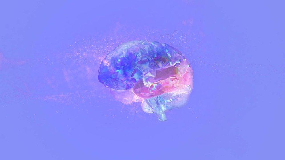 Brain_037_04.jpg