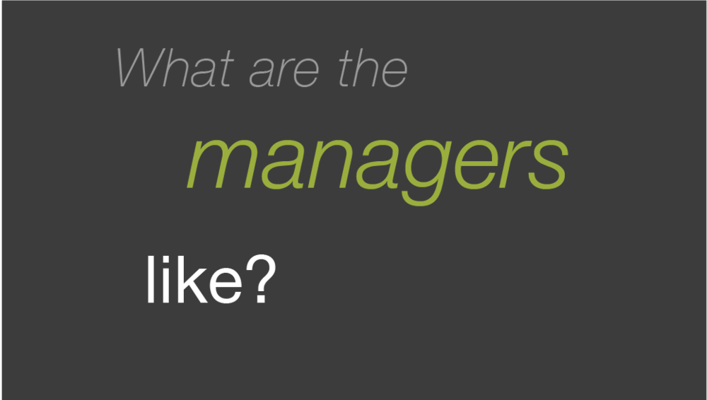 What are the managers like?