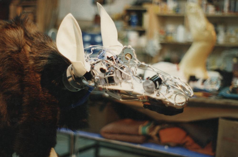 Salt Water Moose (1996)