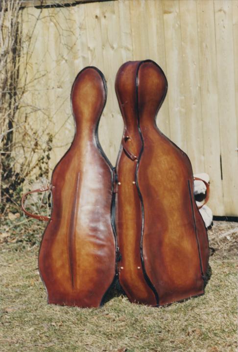 cello_case_2.jpg