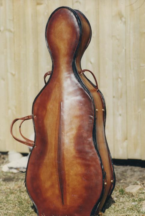 cello_case_1.jpg