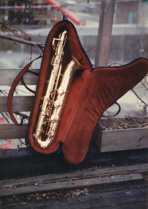 saxophone_case_1.jpg