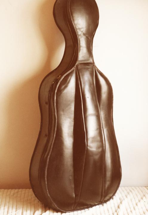 cello_case_4.jpg