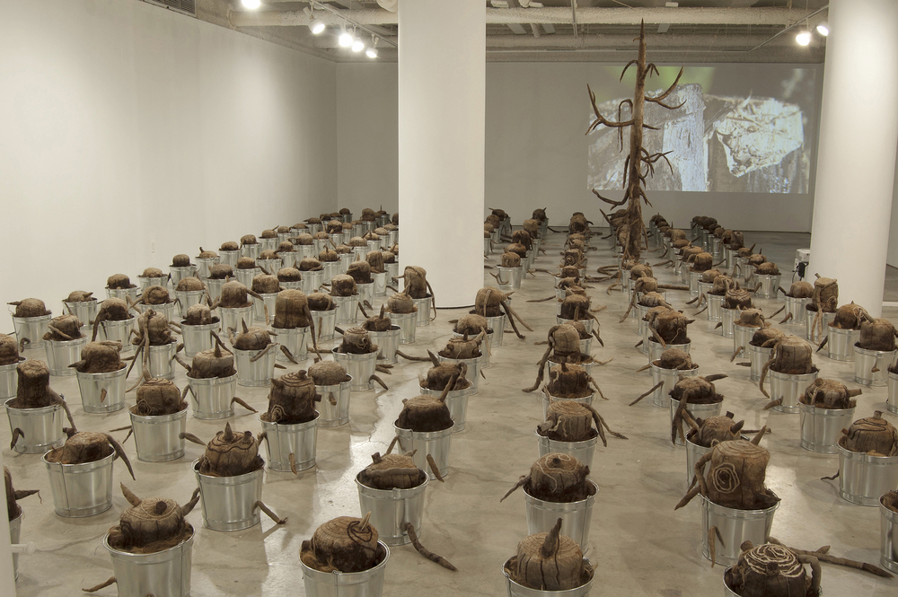 The Last Tree, 2010 - 2016, Silk Organza, cheesecloth, chiffon, rust, tea, human hair, encaustic, wool, string, thread, 193 pails, clotheslines, clothespins, and video with music by Lin Culbertson. About 25w x 45d x 13h feet.