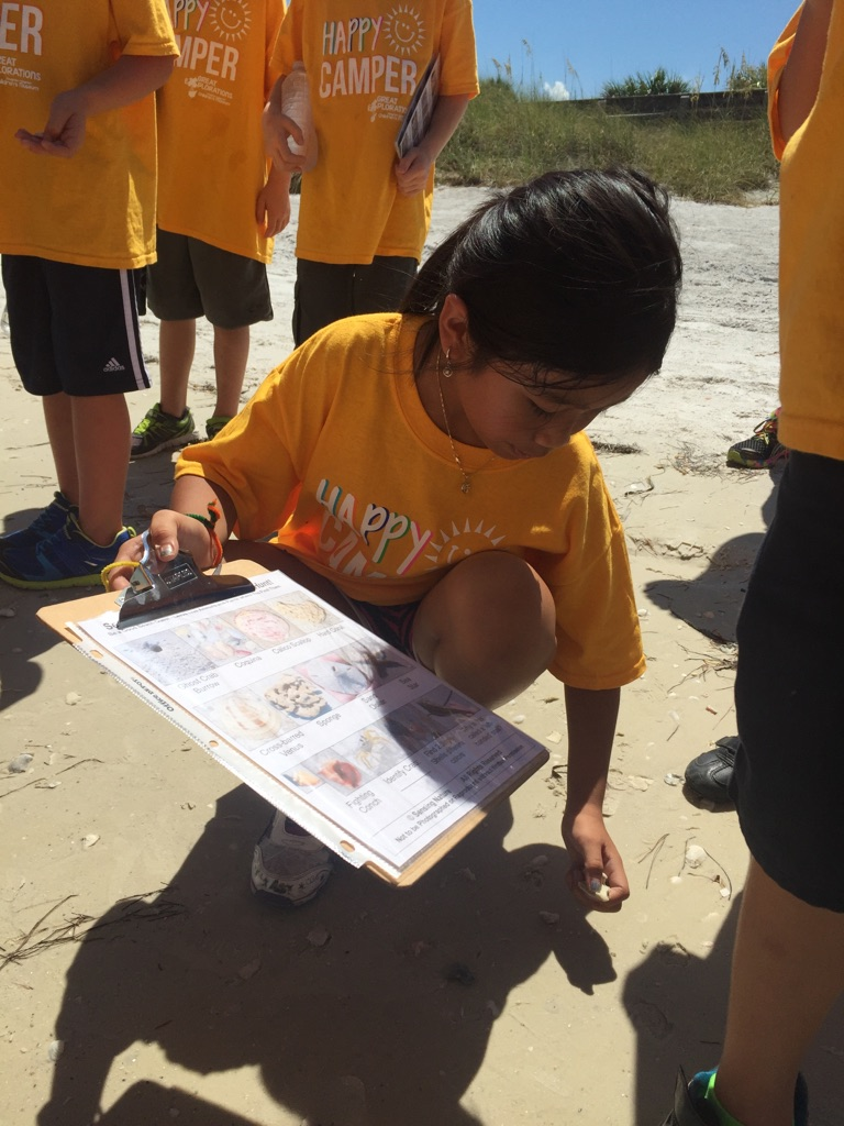 Campers used powers of observation to identify shells during a shell scavenger hunt.