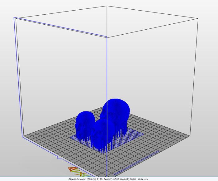 SS-3Dprint_07.jpg