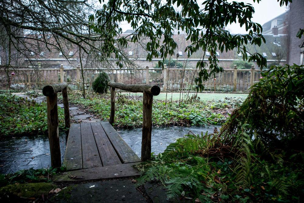 Lize Kraan | Oude Hortus winter 11.jpg