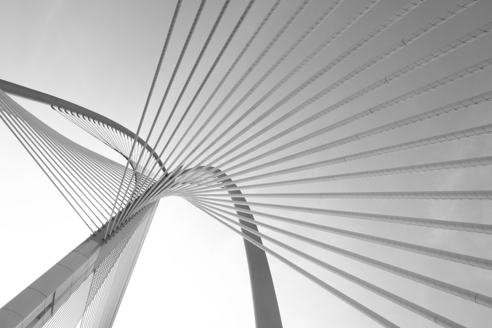 stock-photo-modern-bridge-architecture-at-putrajaya-malaysia-on-a-black-and-white-314455538.jpg