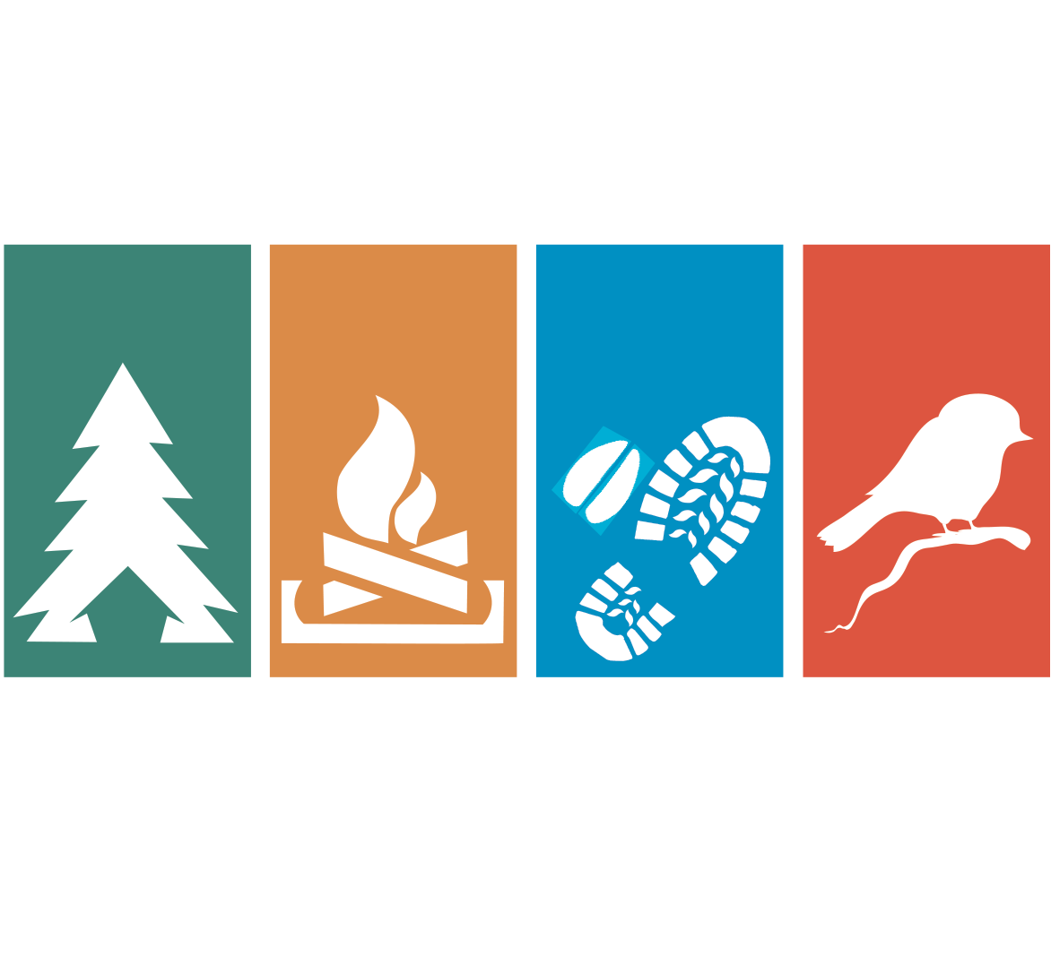tirnanogforestschool