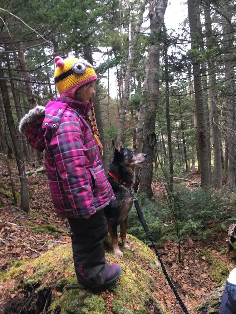 Exploring the forest with our furry friend, Rain