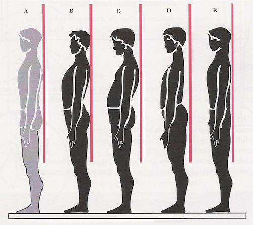 Postural Alignment.jpeg